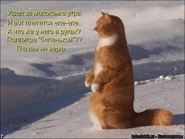 https://content.foto.my.mail.ru/mail/vyachser/_mypagephoto/i-26809.jpg