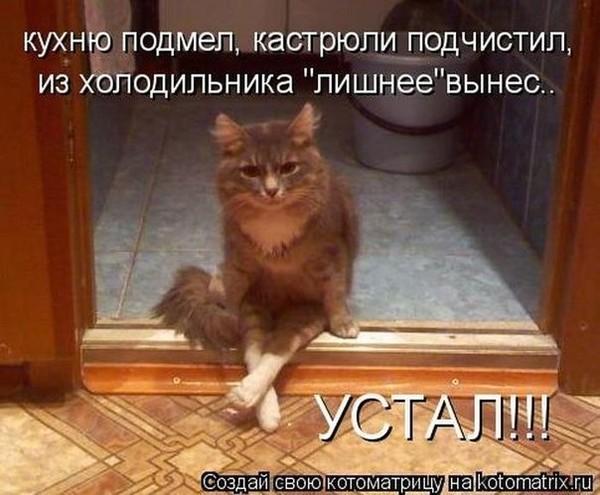 https://content.foto.my.mail.ru/mail/vyachser/_mypagephoto/i-27155.jpg