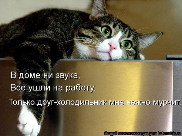 https://content.foto.my.mail.ru/mail/vyachser/_mypagephoto/i-27409.jpg