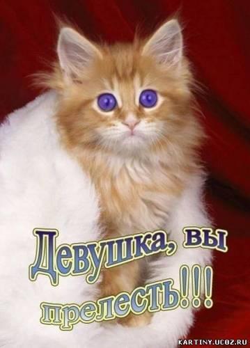 https://content.foto.my.mail.ru/mail/vyachser/_mypagephoto/i-27496.jpg
