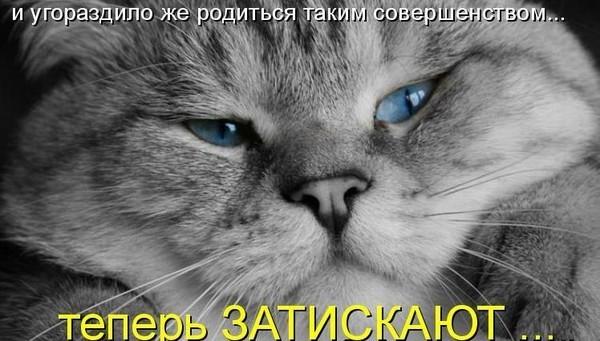 https://content.foto.my.mail.ru/mail/vyachser/_mypagephoto/i-27941.jpg