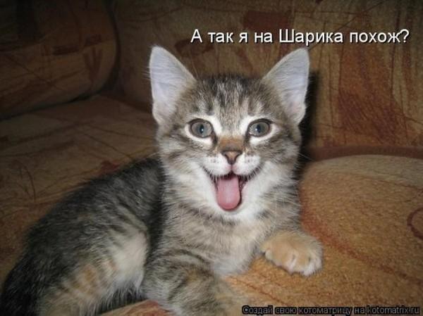 https://content.foto.my.mail.ru/mail/vyachser/_mypagephoto/i-28104.jpg