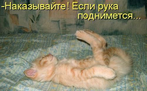 https://content.foto.my.mail.ru/mail/vyachser/_mypagephoto/i-30626.jpg