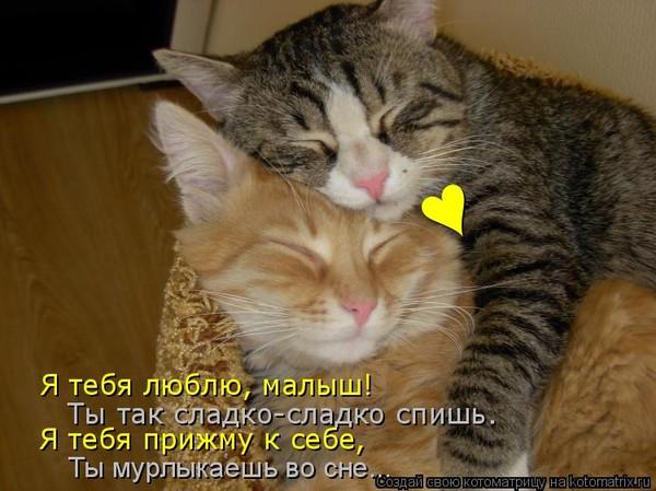 https://content.foto.my.mail.ru/mail/vyachser/_mypagephoto/i-31004.jpg