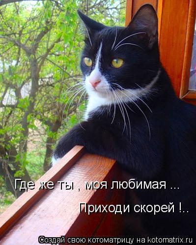 https://content.foto.my.mail.ru/mail/vyachser/_mypagephoto/i-31619.jpg