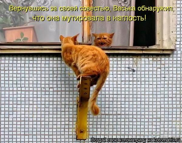 https://content.foto.my.mail.ru/mail/vyachser/_mypagephoto/i-31633.jpg