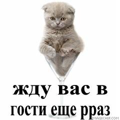 https://content.foto.my.mail.ru/mail/vyachser/_mypagephoto/i-32237.jpg