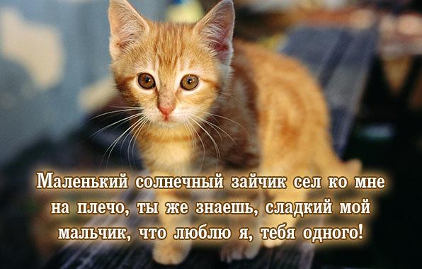 https://content.foto.my.mail.ru/mail/vyachser/_mypagephoto/i-32483.jpg