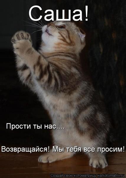 https://content.foto.my.mail.ru/mail/vyachser/_mypagephoto/i-32677.jpg