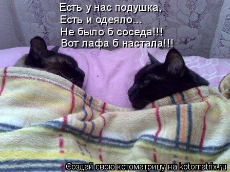 https://content.foto.my.mail.ru/mail/vyachser/_mypagephoto/i-32724.jpg