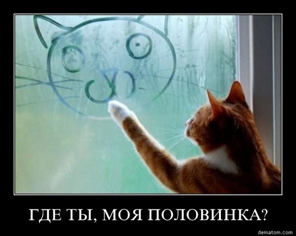 https://content.foto.my.mail.ru/mail/vyachser/_mypagephoto/i-32765.jpg