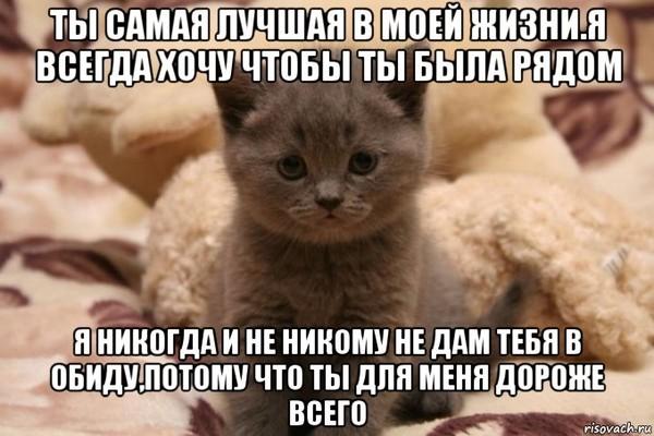 https://content.foto.my.mail.ru/mail/vyachser/_mypagephoto/i-32770.jpg