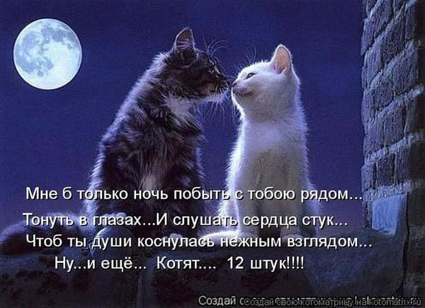 https://content.foto.my.mail.ru/mail/vyachser/_mypagephoto/i-32843.jpg