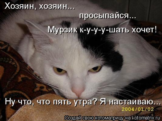 https://content.foto.my.mail.ru/mail/vyachser/_mypagephoto/i-32918.jpg