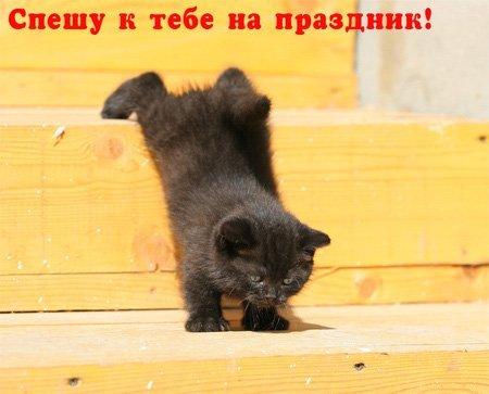 https://content.foto.my.mail.ru/mail/vyachser/_mypagephoto/i-32940.jpg