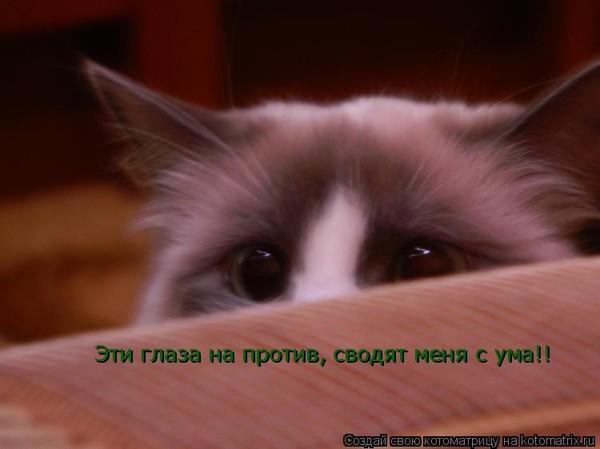 https://content.foto.my.mail.ru/mail/vyachser/_mypagephoto/i-33145.jpg