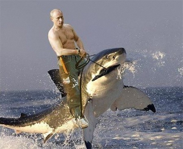 https://content.foto.my.mail.ru/mail/vyachser/_mypagephoto/i-33295.jpg