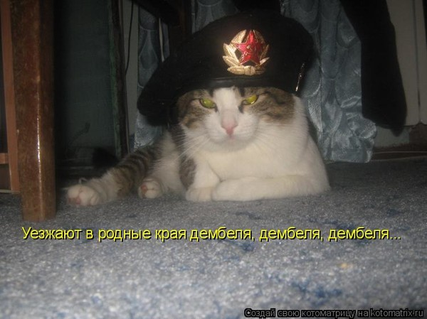 https://content.foto.my.mail.ru/mail/vyachser/_mypagephoto/i-33448.jpg