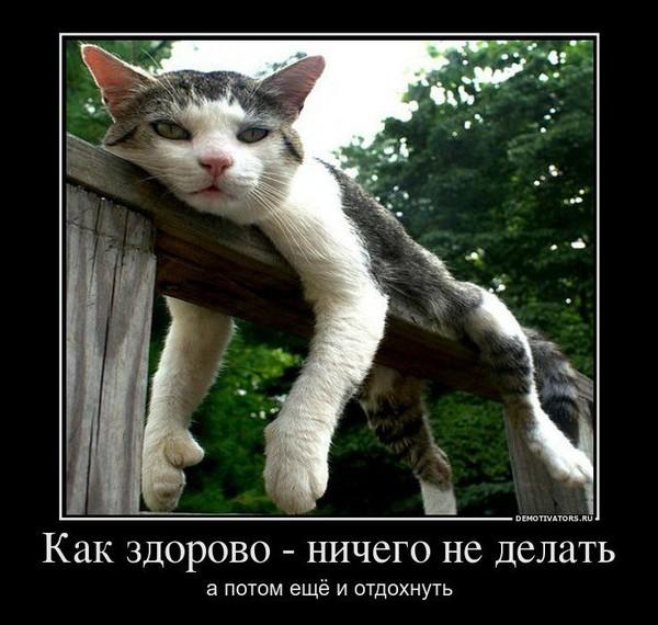 https://content.foto.my.mail.ru/mail/vyachser/_mypagephoto/i-33902.jpg