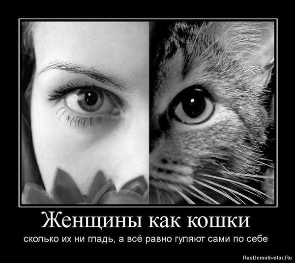 https://content.foto.my.mail.ru/mail/vyachser/_mypagephoto/i-34156.jpg