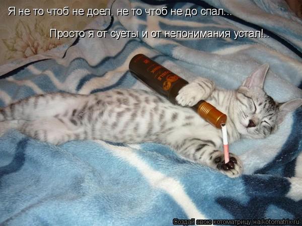 https://content.foto.my.mail.ru/mail/vyachser/_mypagephoto/i-34157.jpg