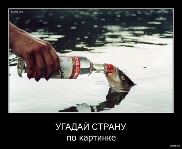 https://content.foto.my.mail.ru/mail/vyachser/_mypagephoto/i-34569.jpg