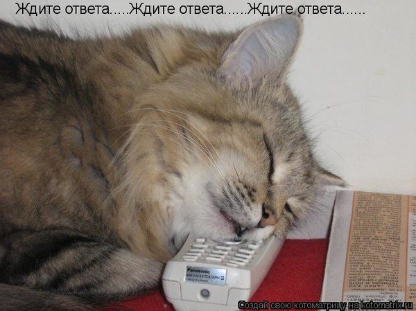 https://content.foto.my.mail.ru/mail/vyachser/_mypagephoto/i-34655.jpg