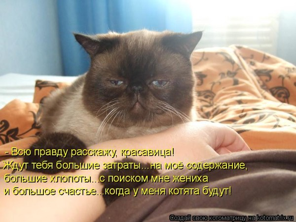 https://content.foto.my.mail.ru/mail/vyachser/_mypagephoto/i-34718.jpg