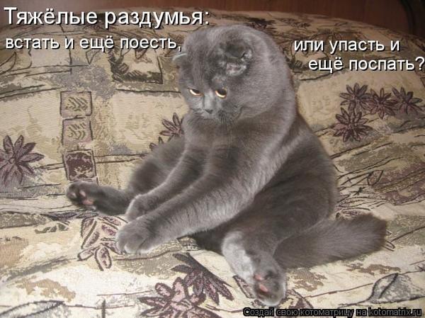 https://content.foto.my.mail.ru/mail/vyachser/_mypagephoto/i-34838.jpg