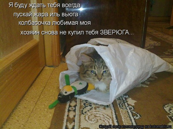 https://content.foto.my.mail.ru/mail/vyachser/_mypagephoto/i-34886.jpg