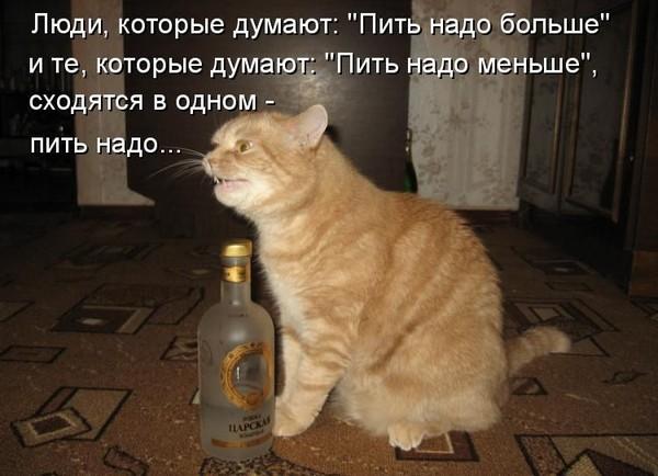 https://content.foto.my.mail.ru/mail/vyachser/_mypagephoto/i-34955.jpg
