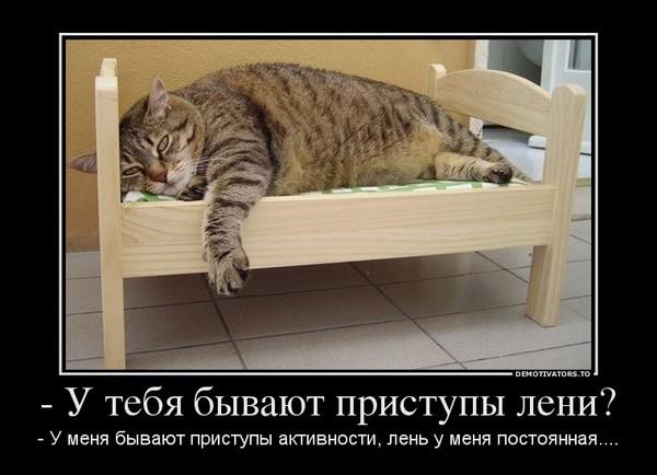 https://content.foto.my.mail.ru/mail/vyachser/_mypagephoto/i-35061.jpg