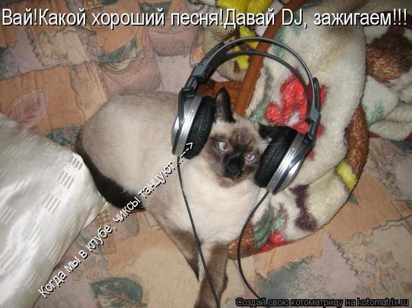 https://content.foto.my.mail.ru/mail/vyachser/_mypagephoto/i-35099.jpg