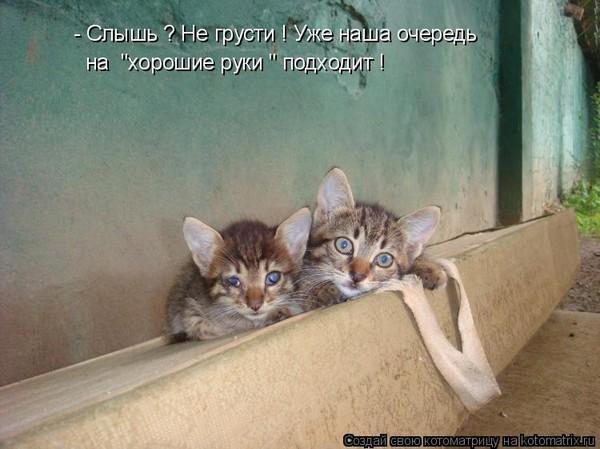 https://content.foto.my.mail.ru/mail/vyachser/_mypagephoto/i-35674.jpg