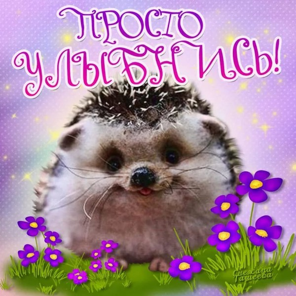 https://content.foto.my.mail.ru/mail/vyachser/_mypagephoto/i-35688.jpg
