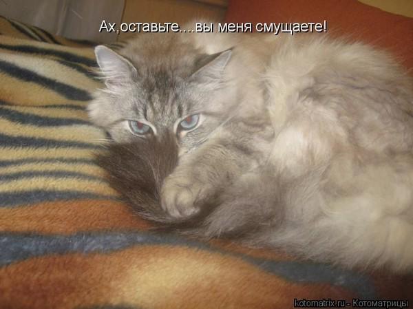 https://content.foto.my.mail.ru/mail/vyachser/_mypagephoto/i-35887.jpg