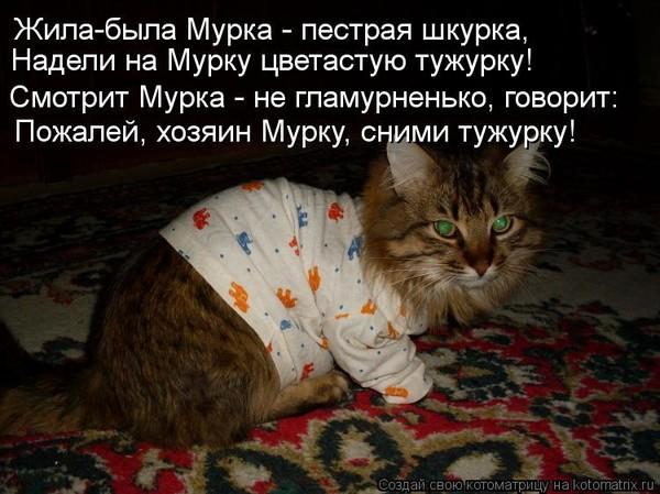 https://content.foto.my.mail.ru/mail/vyachser/_mypagephoto/i-35966.jpg