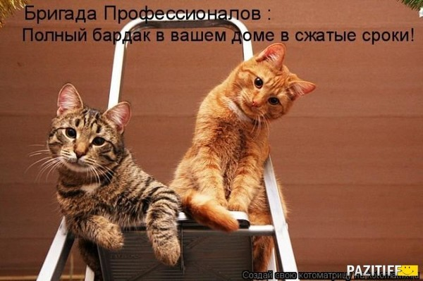 https://content.foto.my.mail.ru/mail/vyachser/_mypagephoto/i-36532.jpg