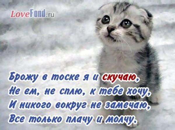 https://content.foto.my.mail.ru/mail/vyachser/_mypagephoto/i-36818.jpg