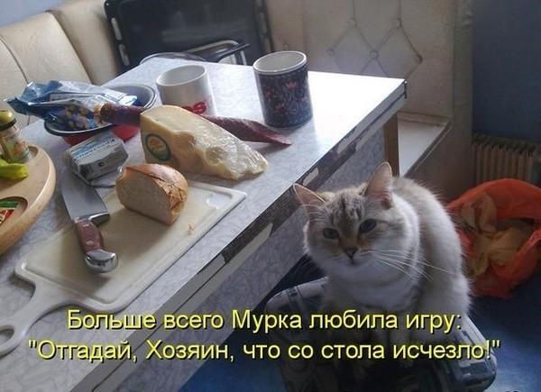 https://content.foto.my.mail.ru/mail/vyachser/_mypagephoto/i-36843.jpg