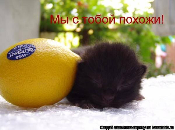 https://content.foto.my.mail.ru/mail/vyachser/_mypagephoto/i-36852.jpg