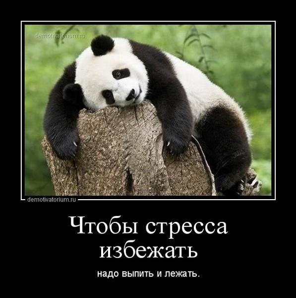 https://content.foto.my.mail.ru/mail/vyachser/_mypagephoto/i-37073.jpg