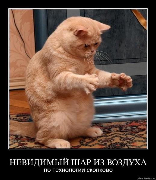 https://content.foto.my.mail.ru/mail/vyachser/_mypagephoto/i-37130.jpg