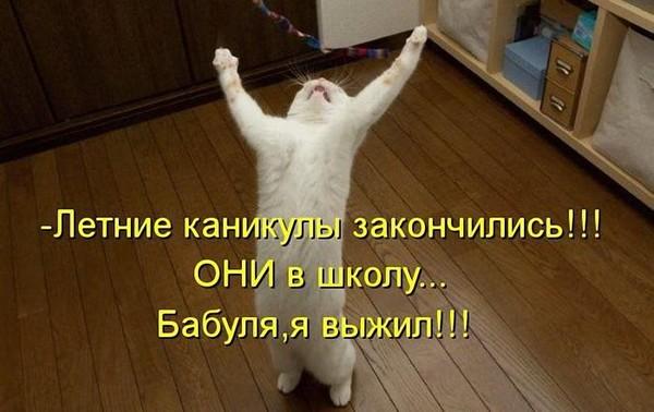 https://content.foto.my.mail.ru/mail/vyachser/_mypagephoto/i-37135.jpg
