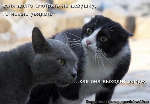 https://content.foto.my.mail.ru/mail/vyachser/_mypagephoto/i-37294.jpg
