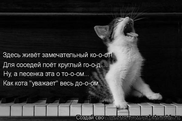 https://content.foto.my.mail.ru/mail/vyachser/_mypagephoto/i-37365.jpg