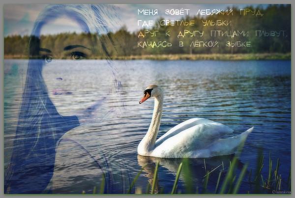https://content.foto.my.mail.ru/mail/vyachser/_mypagephoto/i-38058.jpg