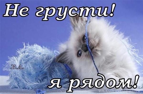 https://content.foto.my.mail.ru/mail/vyachser/_mypagephoto/i-38499.jpg