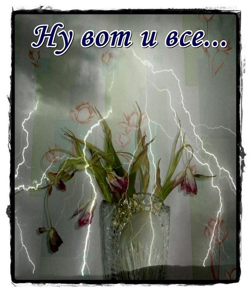 https://content.foto.my.mail.ru/mail/vyachser/_mypagephoto/i-38696.jpg