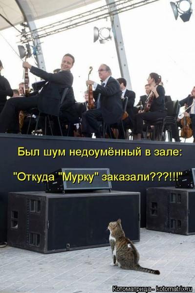 https://content.foto.my.mail.ru/mail/vyachser/_mypagephoto/i-39301.jpg